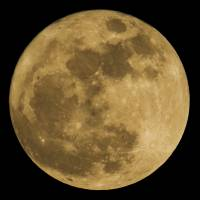 Japan may join U.S. space project in quest to achieve manned moon landing