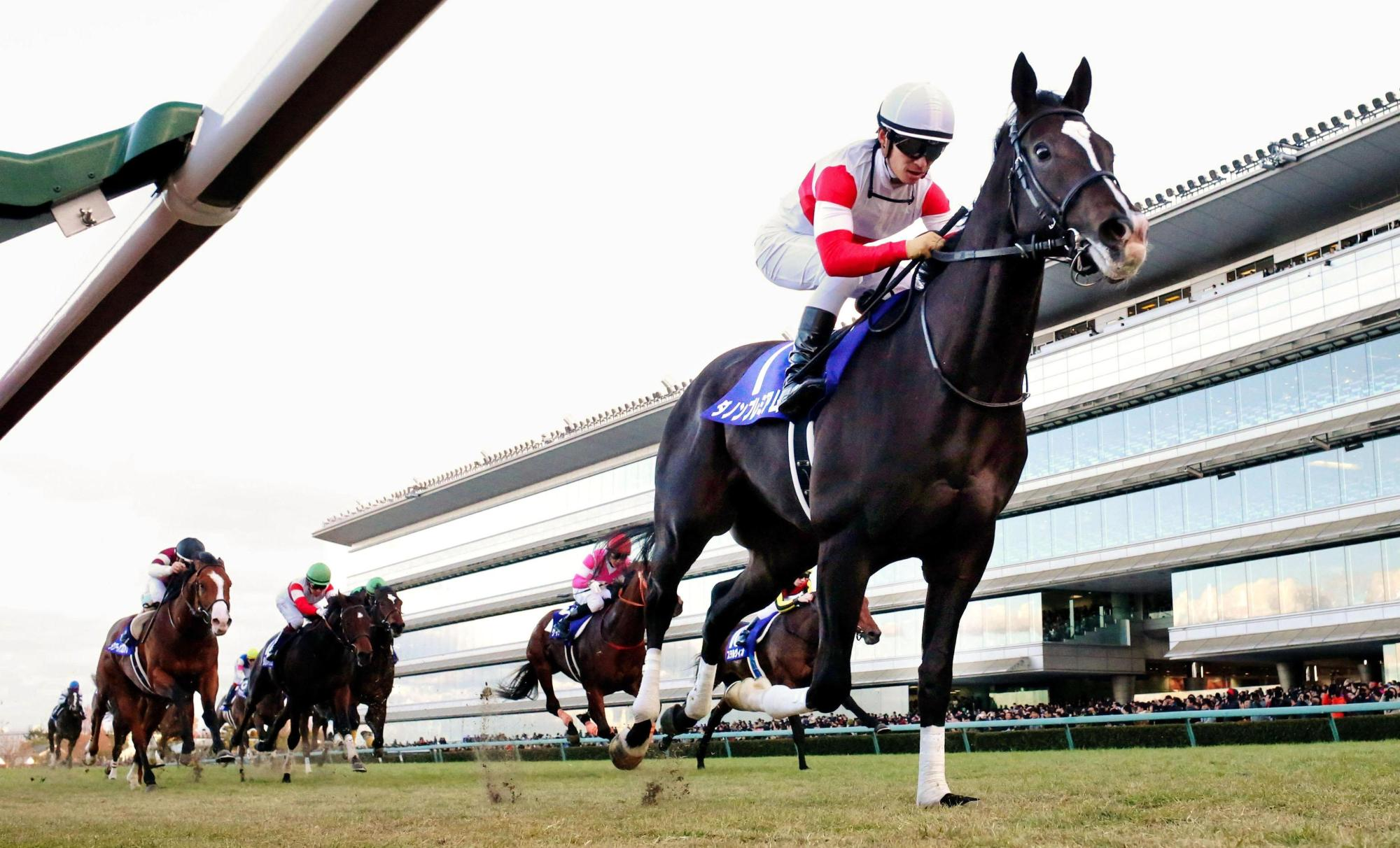 Danon Premium comes home to win the Asahi Hai Futurity Stakes at Hanshin Racecourse on Sunday. | KYODO