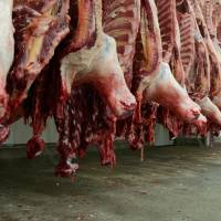 Domestic demand for beef, especially imported meat such as from the U.S. and Australia, as shown in this photo, is increasing.   BLOOMBERG