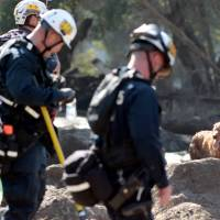 A search and rescue dog is guided through properties after a mudslide in Montecito, California, Thursday. | REUTERS