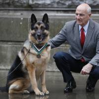 U.S. Army hero dog during WWII receives posthumous U.K. medal