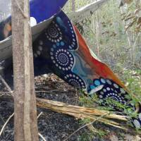 Fiery Costa Rica plane crash claims 12, including 10 Americans