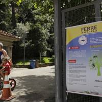 Sao Paulo closes parks as yellow fever outbreak claims 70, worsens