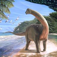 The titanosaurian dinosaur Mansourasaurus shahinae is depicted in an artist's drawing. The dinosaur lived on the coast of what is now the western desert of Egypt approximately 80 million years ago. | REUTERS
