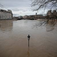 Rising Seine flushes out Paris rats as museums go on flood alert, move art to higher floors