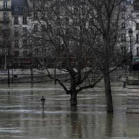 Seine crests at 4 meters above normal level as Paris pulls out mops for cleanup
