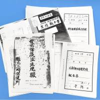 Records of sterilizations under Japan's scrapped eugenics law could help victims seek state compensation