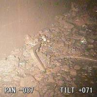 Tepco spots Fukushima fuel debris in reactor 2, says fuel rod assembly 'fell out of reactor'