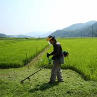 Many Japanese farmers are concerned about the impact the TPP will have on their livelihoods, and consumer groups fear the impact that the trade pact will have  on the content and quality of food sold in Japan. | BLOOMBERG