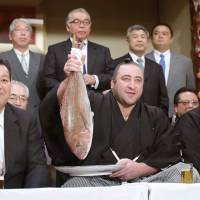 Georgian maegashira Tochinoshin  (center) celebrates on Saturday night after clinching the New Year Grand Sumo Tournament title earlier in the day | KYODO