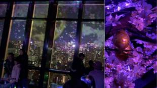 [VIDEO] Celebrating cherry blossoms at Tokyo Tower