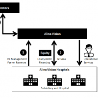 Figure 5: Investment Flows to Alina Vision and Returns.