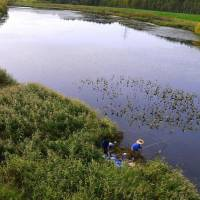 A couple uses a rod to pluck seaweed from a tributary of the Toyohira River, which bisects Moerenuma Park.   MELISSA DEVAUGHN