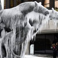 Women take pictures of a frozen statue of horses in the center of Dublin on Thursday.   REUTERS