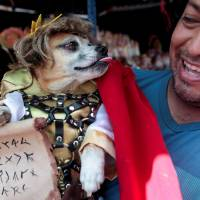 Praying for pooches: Nicaraguans appeal to Saint Lazarus to cure pet dogs