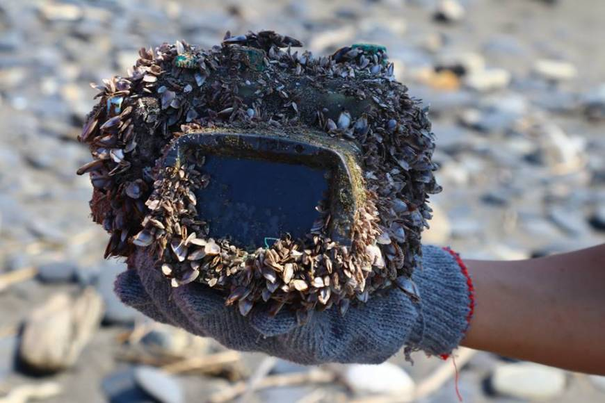 Sophia University student's camera found on Taiwan beach after being lost at sea for two years