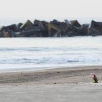 An unidentified man offers prayers and a bouquet on Arahama Beach in Sendai's Wakabayashi Ward early Sunday morning as Japan observed the seventh anniversary of the Great East Japan Earthquake. | KYODO
