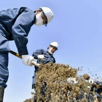 Police officers search for the remains of tsunami victims in Kesennuma, Miyagi Prefecture, on Sunday. | KYODO