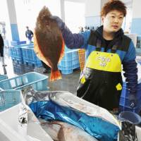 A man holds up a flounder at a fish market in Soma, Fukushima Prefecture, on Feb. 28 before the fish was shipped to Thailand. | KYODO