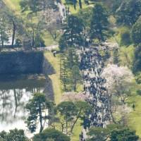 Imperial Palace grounds reopen to public for Japan's cherry blossom season
