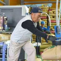 Bags of brown rice harvested in Fukushima Prefecture are checked for radiation in the city of Nihonmatsu in February 2015. Since 2012, the prefectural government has been screening every single bag of rice produced in Fukushima. | KYODO