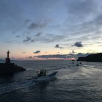 Boats in Taiji, Wakayama Prefecture, head out in search of dolphins, which local fishermen hunt for meat and capture for sale to aquariums. | RIC O'BARRY'S DOLPHIN PROJECT