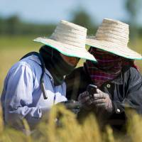 Social networking key to food security