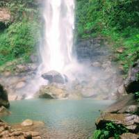 The plunge pool of Pinaisara Falls, Okinawa's largest waterfall, Iriomote Island.   LILY CROSSLEY-BAXTER