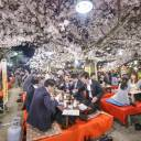 Mind your behavior: As the weather turns warmer and the alcohol flows, it's easy for company parties to turn into bureikō (free and easy) gatherings where female workers can feel uncomfortable.