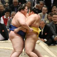 Kakuryu makes most of second opportunity against Takarafuji