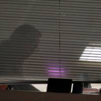 A person is seen inside the building that houses the offices of Cambridge Analytica as investigators from Britain's Information Commissioners Office entered, following the granting of a search warrant by a High Court judge, in London March 23.   REUTERS