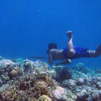 First genetic adaptation to deep diving discovered in Indonesia's 'Sea Nomads'