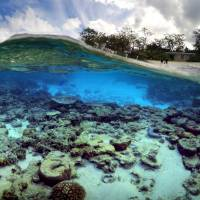 Australia pledges half a billion to restore Great Barrier Reef, protect from global warming