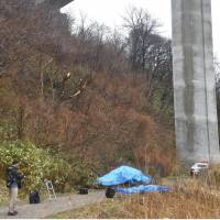 Three die after car falls from Akita Prefecture expressway