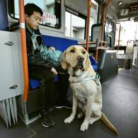 Survey finds many guide dog owners are discriminated against in shops, restaurants despite ban of practice