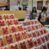 Hong Kong a valuable test market for Japan's campaign to attract foreign tourists