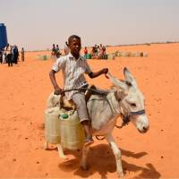 A Sudanese boy travels by donkey to collect potable water far from his home. Kawahara aims to start building a local well this year, so that such children can attend school instead of having to spend time fetching water.   © JUNJI NAITO