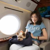 Not a dog's life: Zoe Man and one of her pet dogs get comfortable on a private jet during her trip to Japan from Hong Kong. | REUTERS