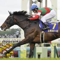 Seventh-favorite Epoca d'Oro wins Satsuki-sho