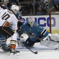 Sharks edge Ducks to complete sweep