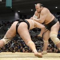 Osunaarashi trying to navigate post-sumo life