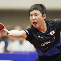 Tomokazu Harimoto competes against Fan Zhendong in a men's singles match at the Asian Cup on Friday in Yokohama. | KYODO
