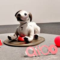 Sales of Sony's new Aibo robot dog off to solid start