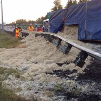 Truck dumps tons of chicken feathers on Washington state highway