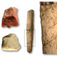 This handout image obtained from the French Museum of Natural History (MNHN) on Wednesday shows two cut flakes and a rib of a rhinoceros at the Kalinga site, all evidence of the presence of a hominkin 709 000 years ago, retrieved from the site of an archaeological dig at Kalinga in the Philippines. | MNHN / THOMAS INGICCO / VIA AFP-JIJI
