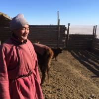 Urban nomads: Mongolian herders migrate to cities as climate change erodes the steppe's abundance