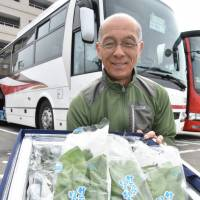 A man in Takayama, Gifu Prefecture, holds a container full of vegetables produced locally, ready to be loaded onto Keio Group's highway express bus, seen parked behind, for transport to Tokyo. | CHUNICHI SHIMBUN