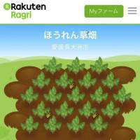 A smartphone screen shows the website for Ragri, an online service that enables consumers to play a game with real-world farming consequences. | KYODO