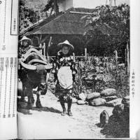 This undated photo shows a woman leading a water buffalo in Yoshino village, Hualien County, Taiwan's first Japanese settlement. | COURTESY OF CHANG SU-BING / VIA KYODO