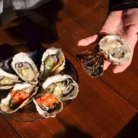 Shima Peninsula oysters topped with lemon, salsa and spring onion. | LANCE HENDERSTEIN